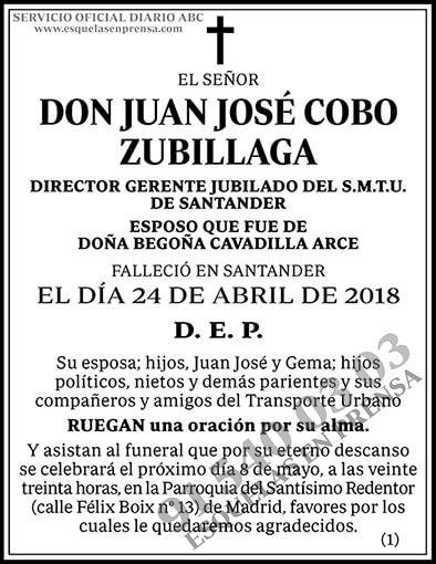 Juan José Cobo Zubillaga